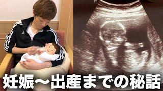 妊娠〜出産までの秘話。チビキンのエコー写真大公開!!