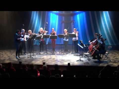 Muziek School Westland  concert 2013