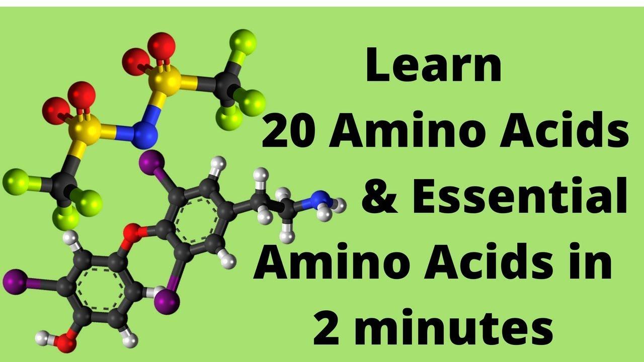the 20 amino acids and essential amino acids mnemonic youtube