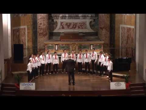 Juvenes Cantores - Salve Regina (Elena Camoletto)