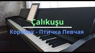 Çalıkuşu (Королек - Птичка Певчая)