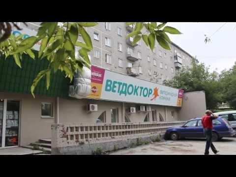 Ветеринарная клиника Ветдоктор - Приемная