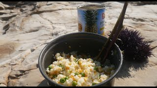 【Fishing Chef】Coastal Foraging - Sea Urchin (Uni) and Cook Uni Fried Rice! 海胆炒饭!