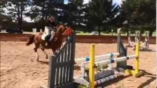 Samantha Lee Taylor Tisdall 2014 Riding Clips