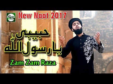 HABIBI YA RASOOL ALLAH - MUHAMMAD ZAM ZAM RAZA QADRI - OFFICIAL HD VIDEO - HI-TECH ISLAMIC