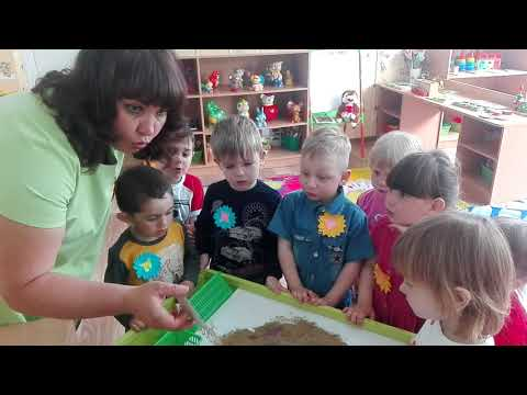 Образовательная деятельность по познавательному развитию детей во второй младшей группе.