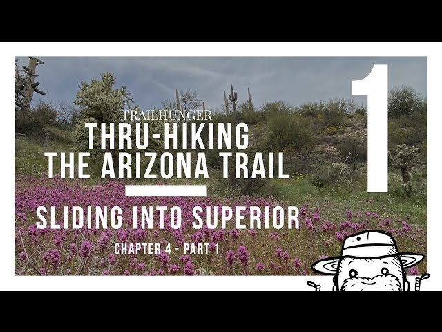 Arizona Trail 2020: Chapter 4 - Sliding into Superior - Part 1
