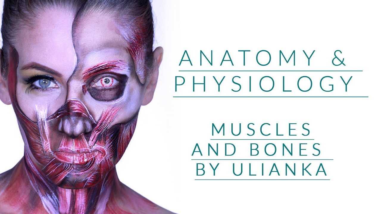 Anatomy & Physiology  Insides Out Face paintng Tutorial