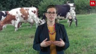 Prix du lait : hausse ralentie par le maintien de la production européenne