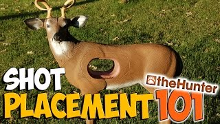 Shot Placement 101 | Elk/Deer/Bear/Moose - theHunter 2015 PC Gameplay w/leeroy