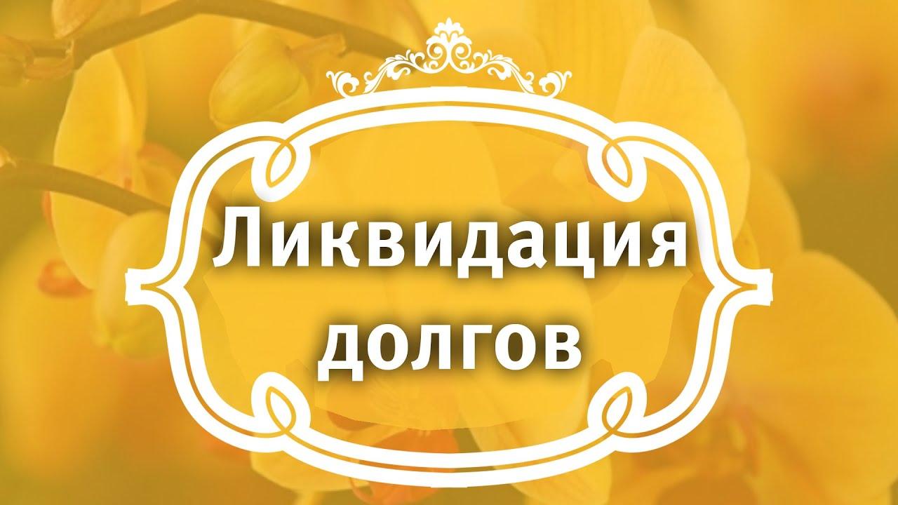 Екатерина Андреева - Ликвидация долгов.