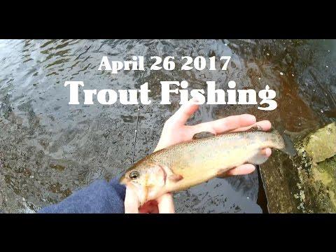 Trout Fishing in NJ 4/26/2017