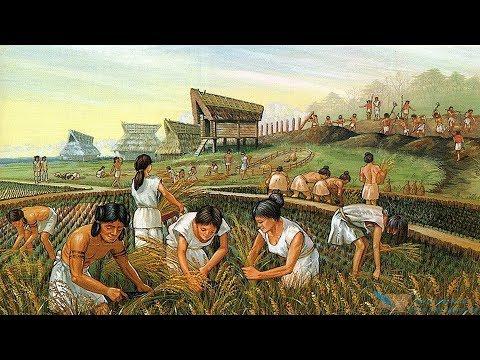 İnsanlık Tarihinin Doğuşu Ve İlk Yazılı Kaynaklar || Ataforum TV
