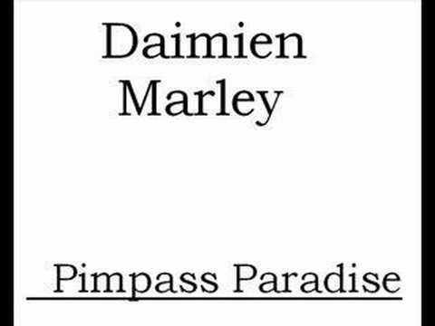 Damien Marley Pimpass Paradise
