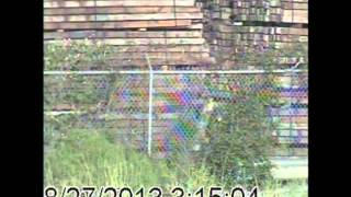 October Catch of the Month - Trespassing on an Industrial Property