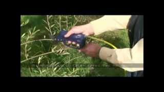 Campagnola Pneumatic Pruning -Vineyard, Orchard and Blueberries