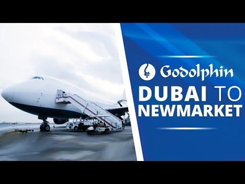 Dubai To Newmarket