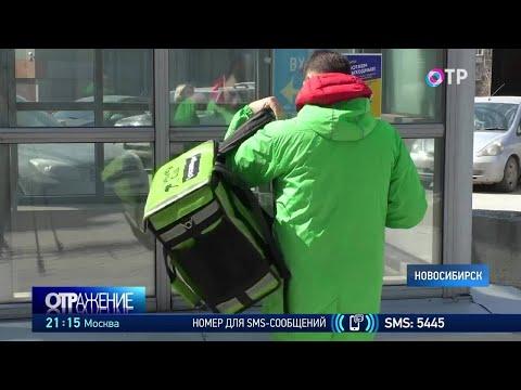 Какие вакансии сейчас востребованы? Сюжет из Новосибирска, Санкт-Петербурга и Воронежской области