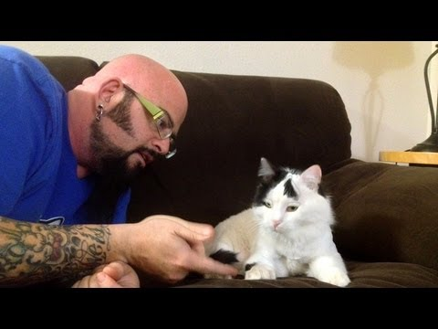 Jackson Galaxy's Sleepover with Raed