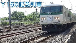 Y160記念列車 藤沢駅付近通過