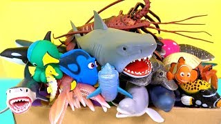 Learn Sea Animal Names! Box Of Sea Animal Toys for Children Sharks Whales Fish Turtles Educational