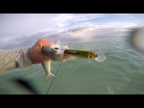 Salt Water Surf Fishing with Bass Baits!