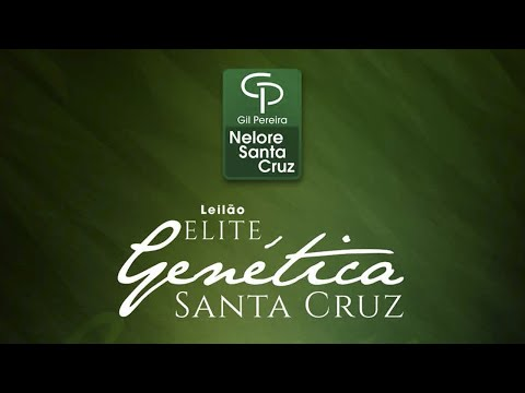 Lote 18   Lua FIV Santa Cruz   GPO A242 Copy