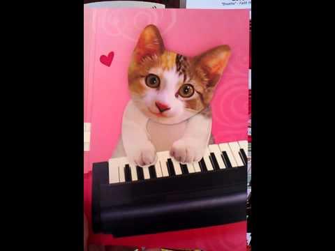 musical kitten card at hallmark