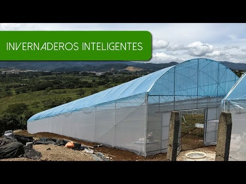 invernaderos-instalados-en-costa-rica-|-greenhouses-installed-in-costa-rica