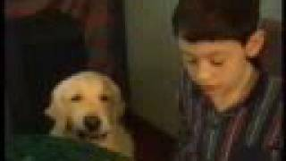 Dog Helps Boy Come Out of Autism - A Friend Like Henry