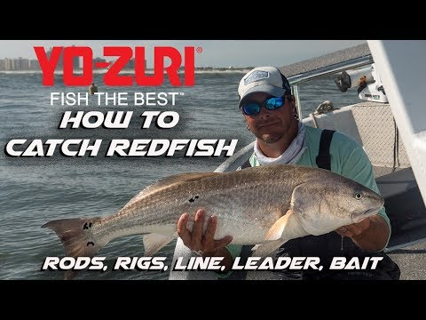 How To Catch Redfish (Rods, Rigs, Line & Leader)