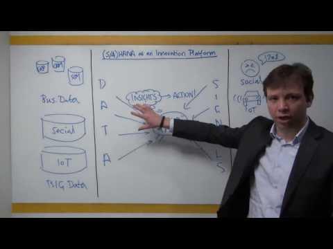 SAP HANA as the Brain of Your Business