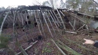 Abandoned Chicken Farm in Lakewood New Jersey Coop Horse