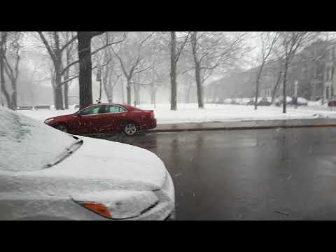 Snowfall in Montreal 10th March, 2018