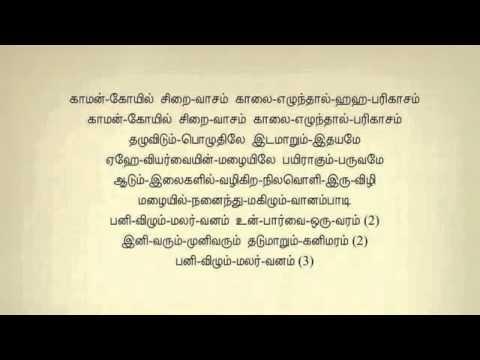 Panivilum Malarvanam Un Paarvai Tamil Karaoke Tamil Lyrics   YouTube