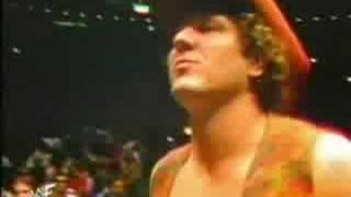 WWF/WWE History video - Kid Rock