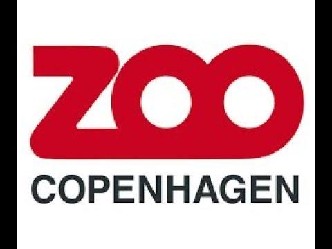 Copenhagen Zoo | Denmark | Kids Entertainment | Europe | Animals