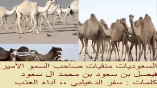 السعوديات منقيات صاحب السمو الأمير فيصل بن سعود بن محمد آل سعود ،، كلمات سفر الدغيلبي ،، آداء العذب
