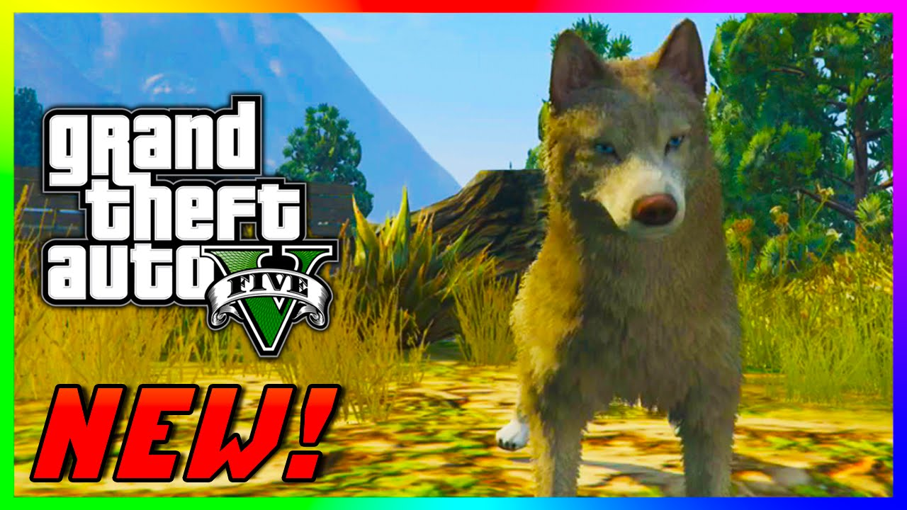 Image of: Animal Collection Gta Ps4 Xbox One Become Bloodthirsty Killer Wolf Gta Ps4 Youtube Gta Ps4 Xbox One Become Bloodthirsty Killer Wolf Gta Ps4