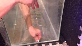 200g Reef Tank - Episode 34 - Fish Room ( Part 1 )