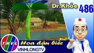 THVL | Dr. Khỏe - Tập 486: Hoa đậu biếc - Phần 1