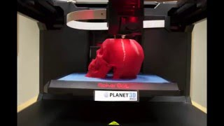 Time-Lapse video of a skull Printed from MakerBot Replicator 5th Generation 3D Printer