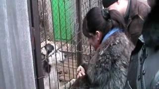 Нейковский + семья 2010.12.30 152126