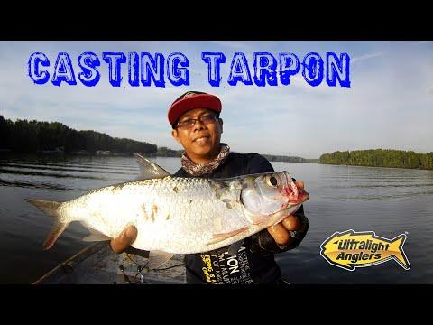 Casting Ikan Bulan Sg Merbok|Ultralight|Water Explosion On Topwater