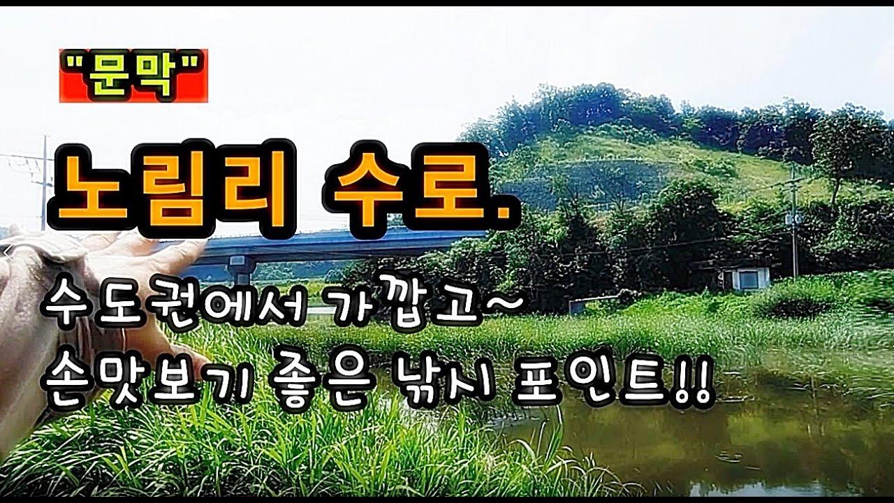 [원주]_ 문막 노림리 수로 / 분위기 좋고 손맛 보기 좋은 낚시 포인트 / 강원도 원주시 문막읍 후용리 1590