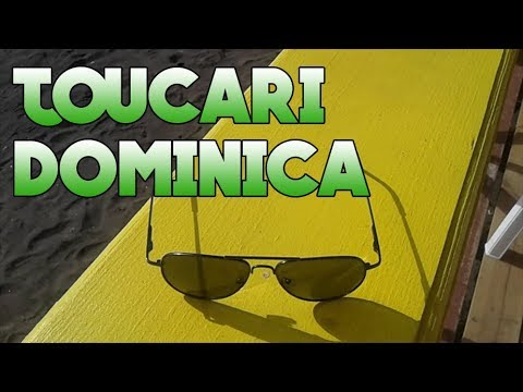 TRIP TO TOUCARI DOMINICA (Vlog) | Miracle J