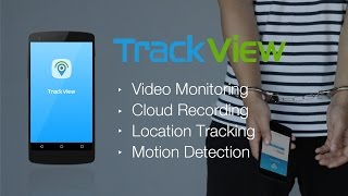 Video Monitor – Surveillanc