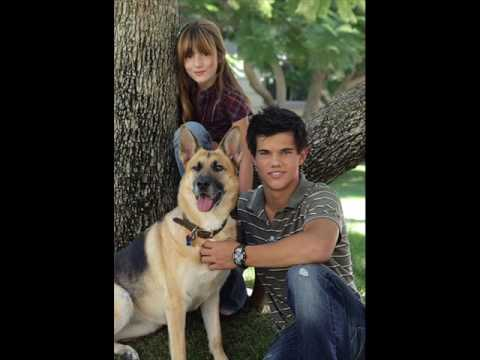 Taylor Lautner: All you could ever dream about.