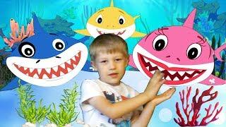 Baby Shark Dance | Sing and Dance | Nursery Rhymes Kids Songs Fun Songs for Children