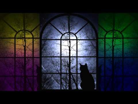 ♫ Memory from Cats ♫   Jose Luis Rodriguez El Puma